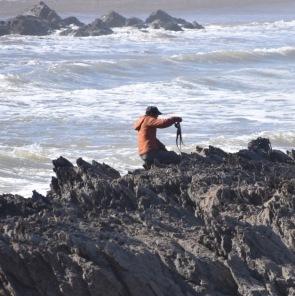der Fischer holt mit einer langen Stange Oktopusse aus den Klippen